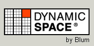 dynamic space logo